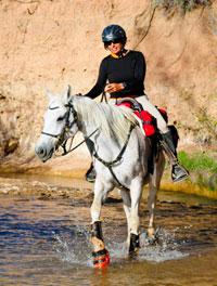 hoof boots for horses